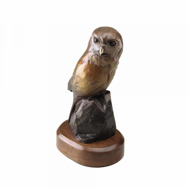 northern pygmy owl, pygmy owl, owl, small owl, bird, small, miniature, cute, beautiful, avian, rip caswell, alison caswell, sculpture, sculptor, troutdale, studio, art, decor, home, fine art, bronze, brass, statue, statuary, decoration, oregon, northwest art, animal, mammal, wildlife