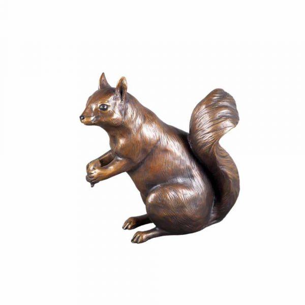 squirrel, nut, acorn