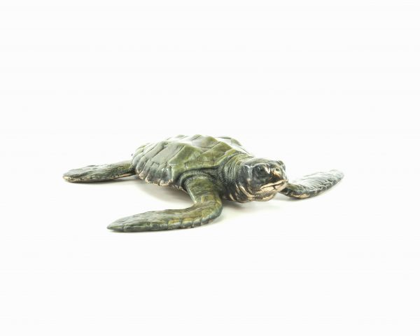Baby Sea Turtle bronze sculpture